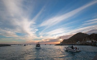 Rancho San Lucas Reviews Sports Fishing Off of Cabo San Lucas